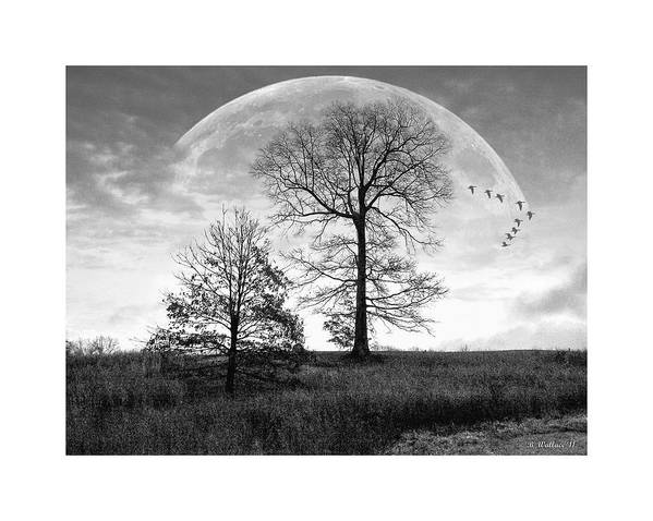 2d Art Print featuring the photograph Moonlit Silhouette by Brian Wallace
