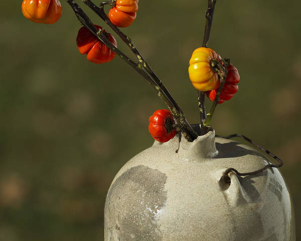 Solanum Integrifolium Print featuring the photograph Pumpkin On A Stick In An Old Primitive Moonshine Jug by Kathy Clark