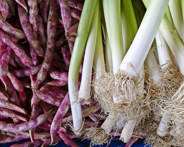 Food Art Print featuring the photograph Purple Beans And Green Onions by Betty Eich