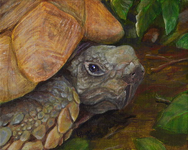 Leslie Art Print featuring the painting Rosie The Turtle by Leslie Hoops-Wallace