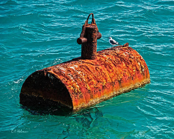Rust Art Print featuring the photograph Rusty Bobber by Christopher Holmes