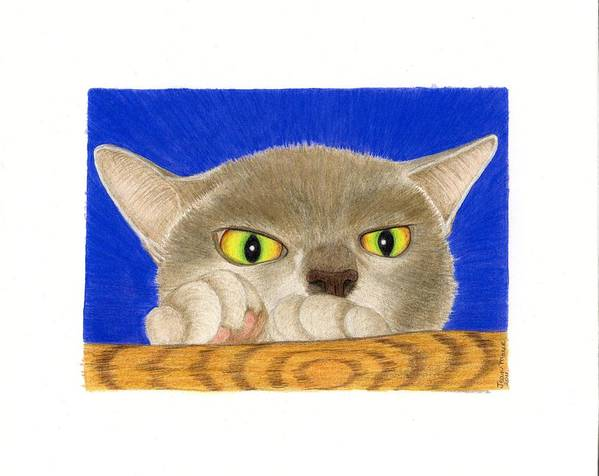 Cat Prints Art Print featuring the drawing Simon 1 by Jean Marie Economen
