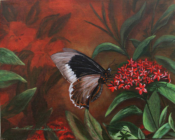 Butterfly Art Print featuring the painting Sooo Tasty by Charlotte Curran