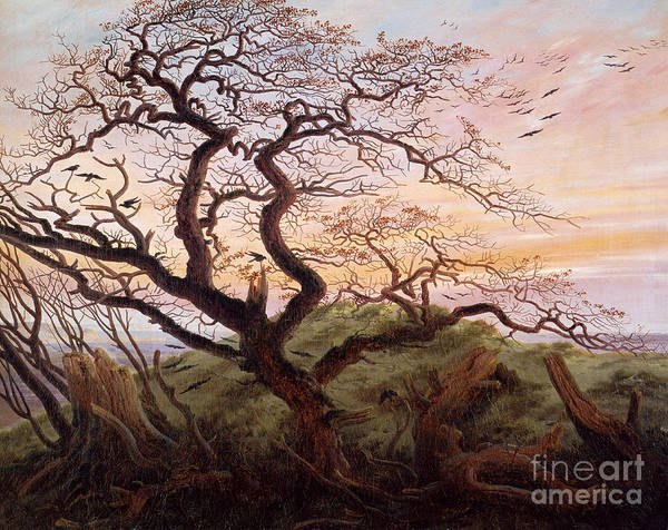The Tree Of Crows Art Print featuring the painting The Tree Of Crows by Caspar David Friedrich