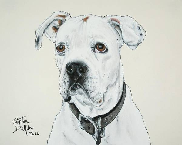 Boxer Art Print featuring the pastel Will You Love Me... by Stephen Duffin