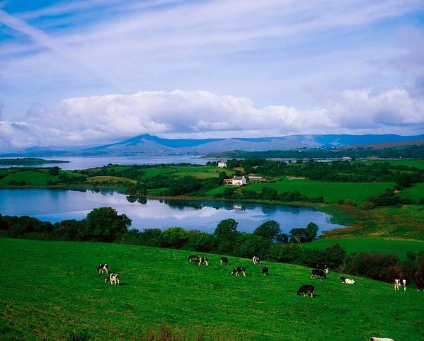 Bantry Art Print featuring the photograph Bantry Bay, Co Cork, Ireland by The Irish Image Collection