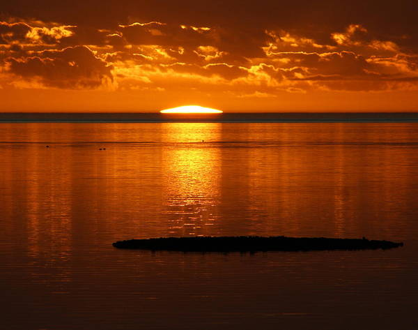 Sunset Art Print featuring the photograph Looking For The Green Flash by Debbie May