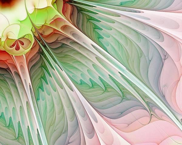 Digital Art Art Print featuring the digital art Petals by Amanda Moore