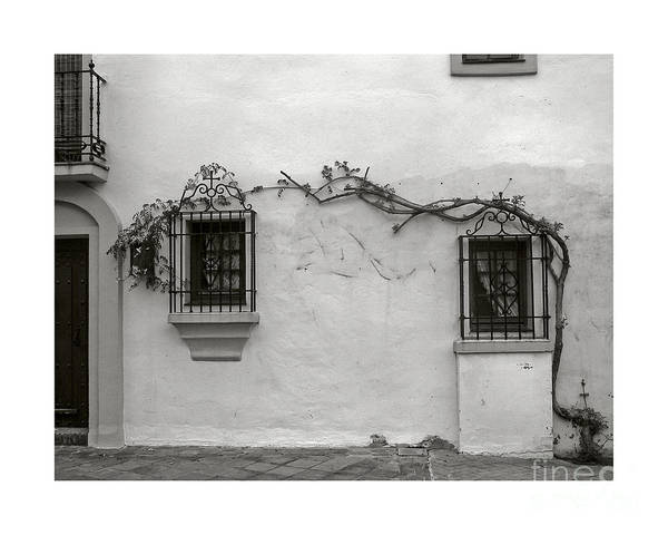Andalucia Art Print featuring the photograph Andalucia Wall by Thomas Marchessault