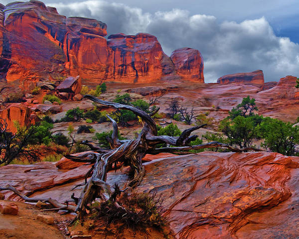 Arches Art Print featuring the photograph Arches National Park Rain by Kenneth Eis