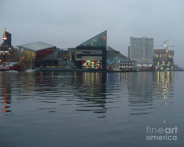 Baltimore Art Print featuring the photograph Baltimore Harbor Reflection by Carol Groenen