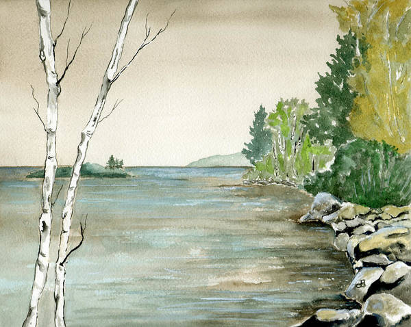 Landscape Watercolor Birches Trees Lake Pond Water Sky Rocks Art Print featuring the painting Birches By The Lake by Brenda Owen