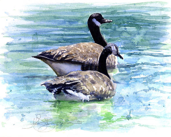 Canada Art Print featuring the painting Canada Geese by John D Benson
