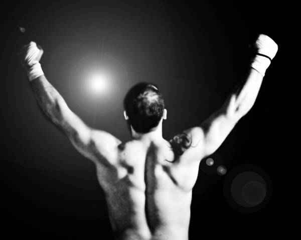 Boxer Art Print featuring the photograph Champion by Dean Farrell