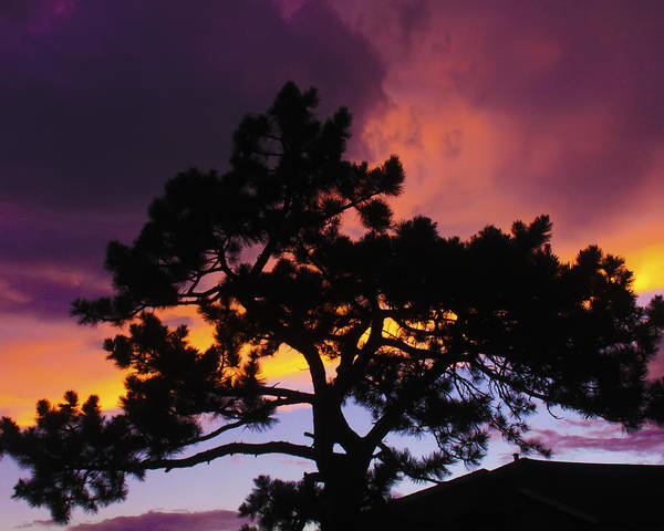 Sunset Art Print featuring the photograph Colorful Colorado Sunset by Perspective Imagery