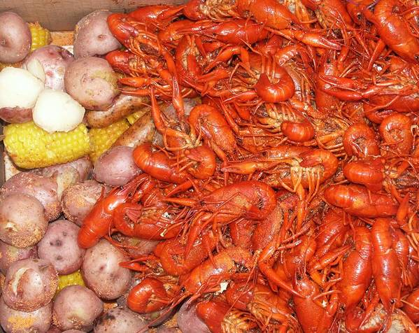 Crawfish Art Print featuring the photograph Crawfish Boil by Bob Guthridge