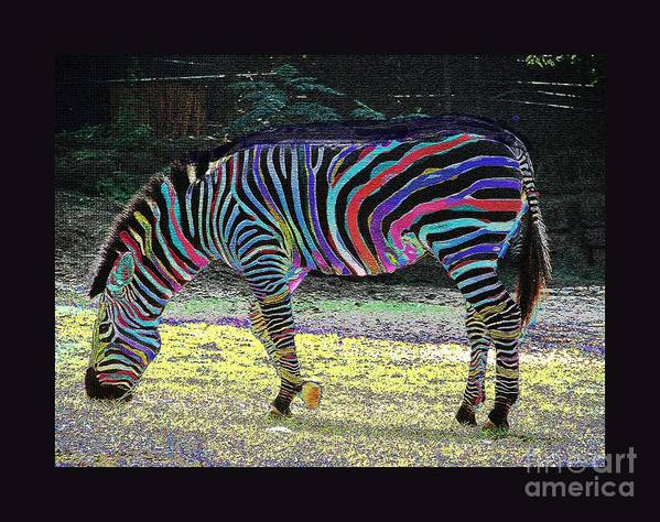 Zebra Art Print featuring the photograph Differt Stripes For Different Types by David Carter