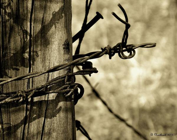Barbed Art Print featuring the photograph Don't Fence Me In 2 by Betty Northcutt