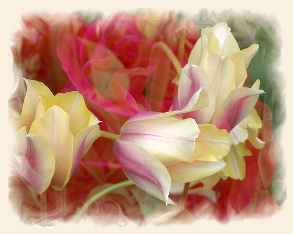 Floral Art Print featuring the photograph Dutch Treat by Chuck Brittenham