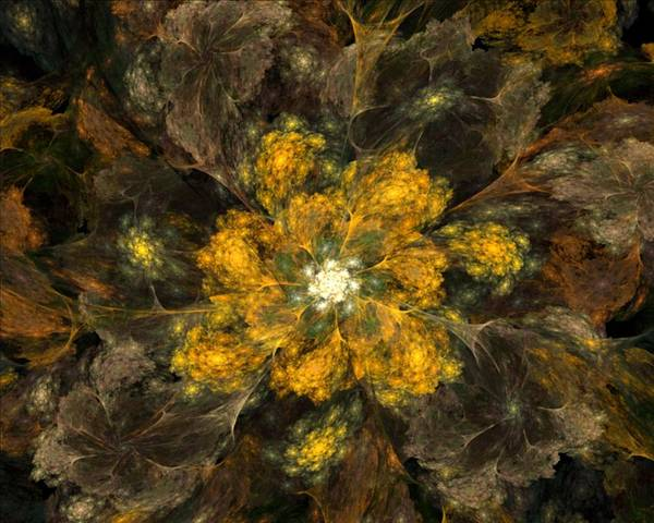 Digital Painting Art Print featuring the digital art Fractal Floral 02-12-10 by David Lane