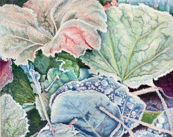 Leaves Art Print featuring the painting Frosted Leaves by Robynne Hardison