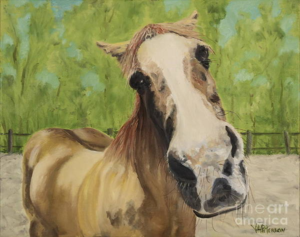 Horse Art Print featuring the photograph Gunther by Valerie Ann Peterson