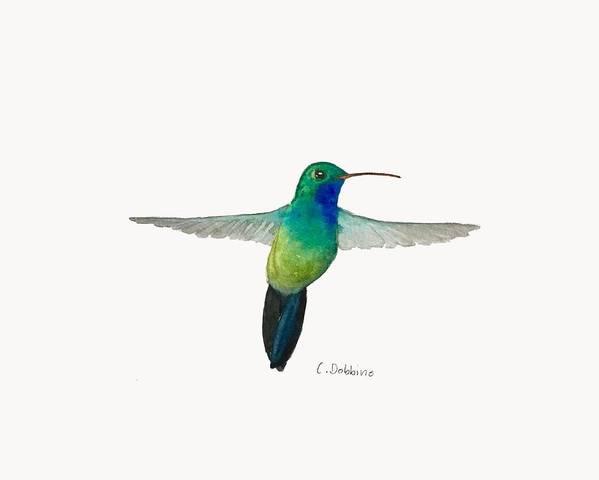 Bird Art Art Print featuring the painting In Flight by Christiane Dobbins