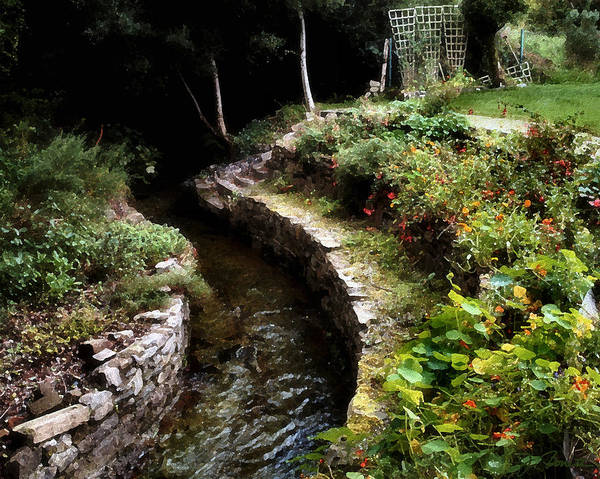 Ireland Art Print featuring the photograph Irish Garden Stream by Joe Bonita