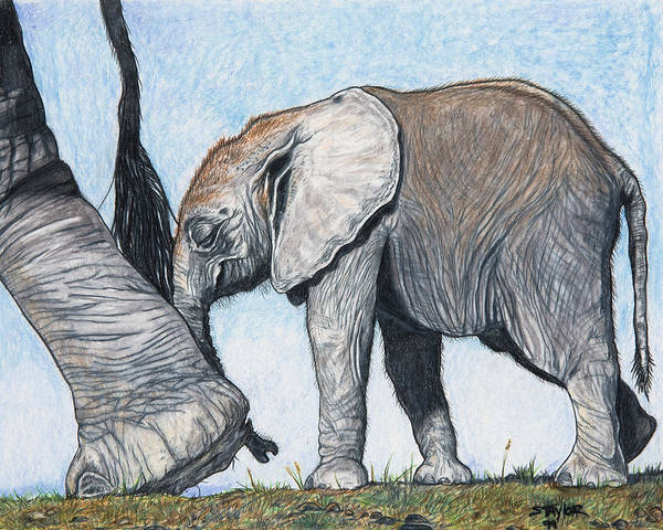 Elephants Art Print featuring the mixed media Leading The Way by Stephen Taylor