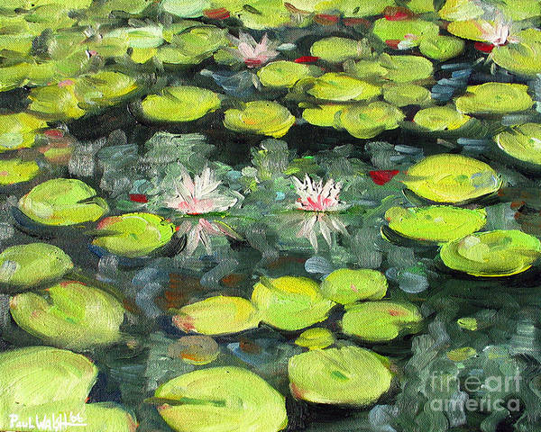 Pond Art Print featuring the painting Lily Pond by Paul Walsh