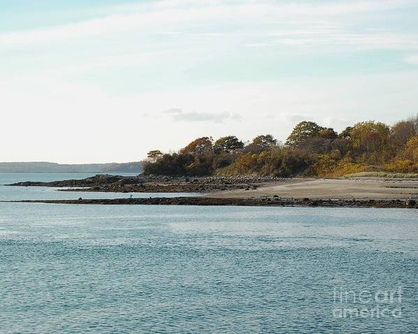 Island Art Print featuring the photograph Little Chebeague Beach by Faith Harron Boudreau