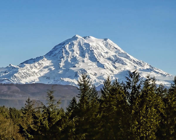 Mount Rainier Art Print featuring the photograph Majestic by Kelley King