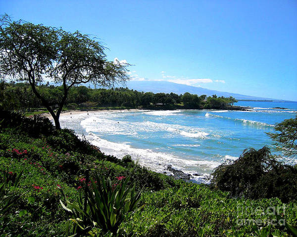 Hawaii Art Print featuring the photograph Mauna Kea Beach by Bette Phelan