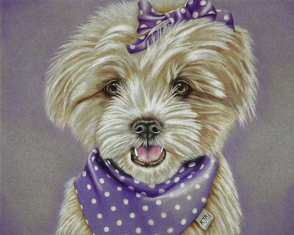 Dog Art Print featuring the drawing Molly The Maltese by Karrie J Butler