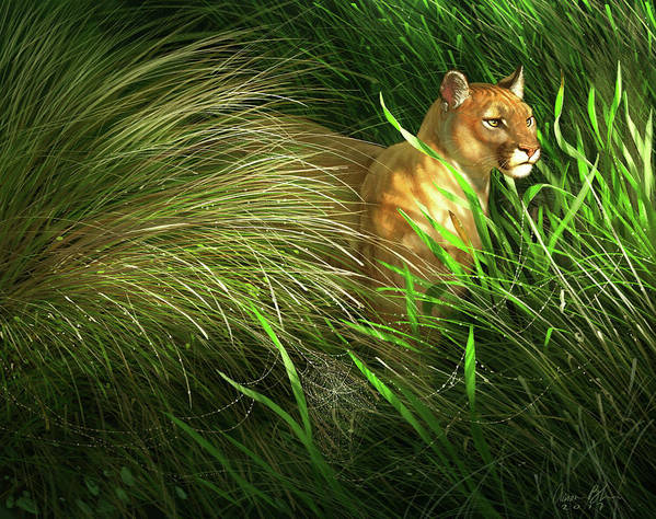 Florida Panther Art Print featuring the digital art Morning Dew - Florida Panther by Aaron Blaise