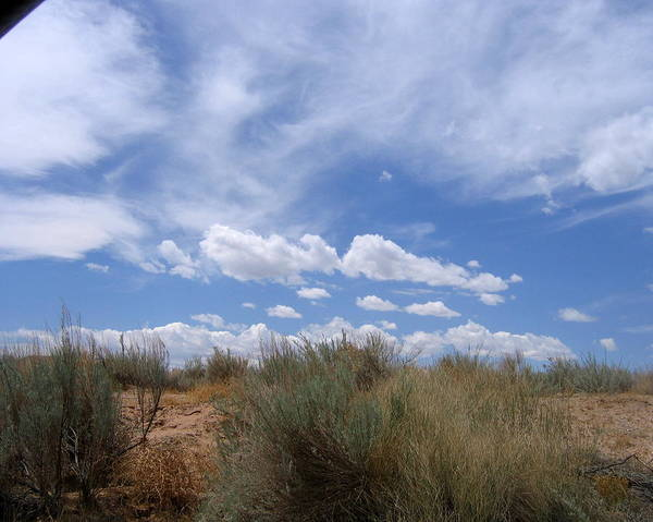 Landscape Art Print featuring the photograph New Mexico Sand Grass Sky by Natey Freedman