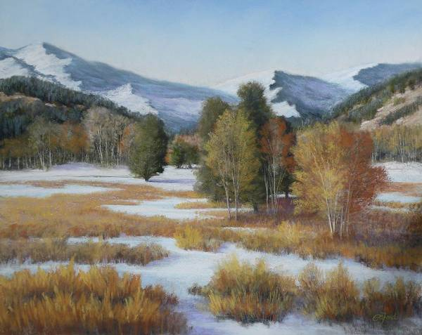 Pastel Art Print featuring the painting Paradise by Paula Ann Ford