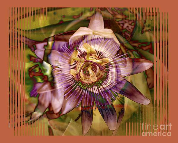 Flower Art Print featuring the photograph Passion by Chuck Brittenham