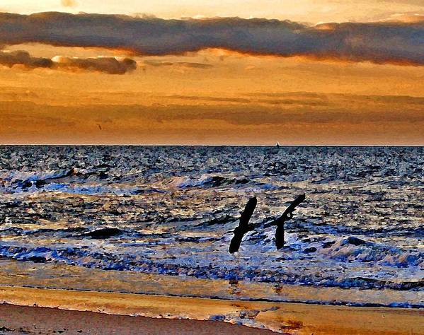 Pelican Art Print featuring the painting Pelicans Crusing The Coast by Michael Thomas