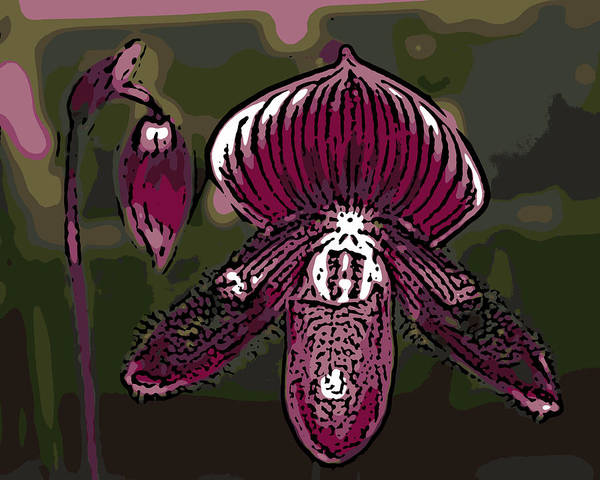 Orchid Art Print featuring the photograph Purple Orchid Woodcut by Ann Tracy