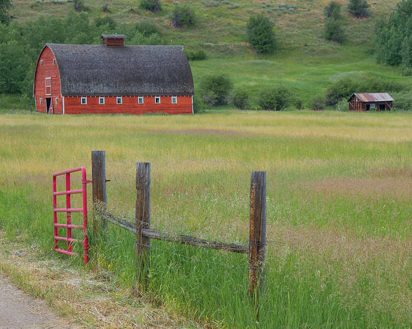 Red Barn Art Print featuring the photograph Red Barn by Joan McDaniel