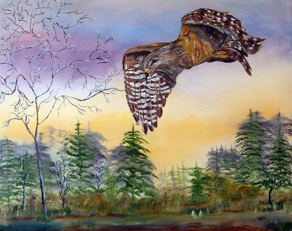 Hawk Art Print featuring the painting Red Shouldered Hawk by Mikki Alhart