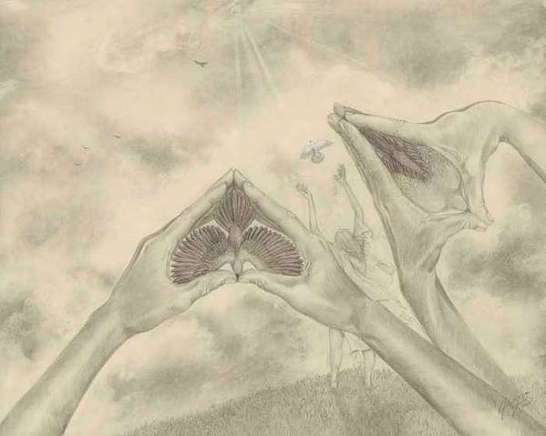 Birds Art Print featuring the drawing Release by Julianna Ziegler