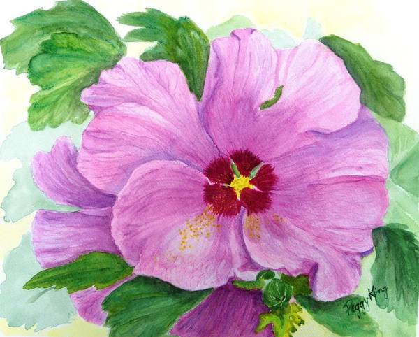 Watercolour Art Print featuring the painting Rose Of Sharon by Peggy King