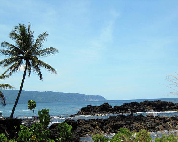 Hawaii Art Print featuring the photograph Shark's Cove by Shannon Pearson