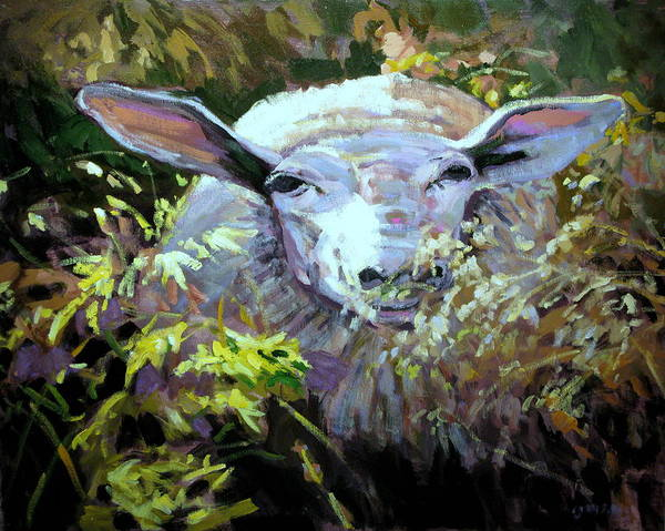 Animals Art Print featuring the painting Sheepish by Brian Simons
