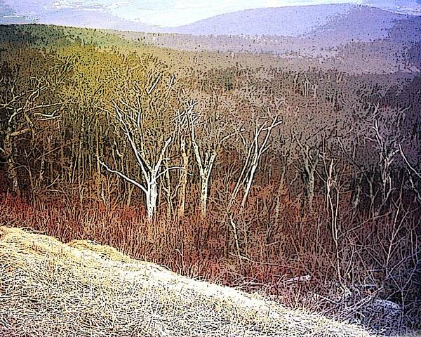 Landscape Shenandoah Valley Wilderness Winter Virginia Usa Blue Ridge Mountains Art Print featuring the mixed media Shenandoah Wilderness by Susan Epps Oliver