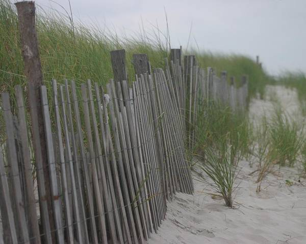 Sand Art Print featuring the photograph Snow Fence by Carla Neufeld