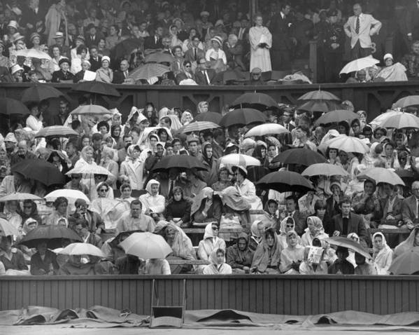 Adult Art Print featuring the photograph Soggy Supporters by Ron Stone