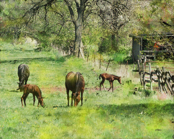 Spring Colts Art Print featuring the digital art Spring Colts by John Beck